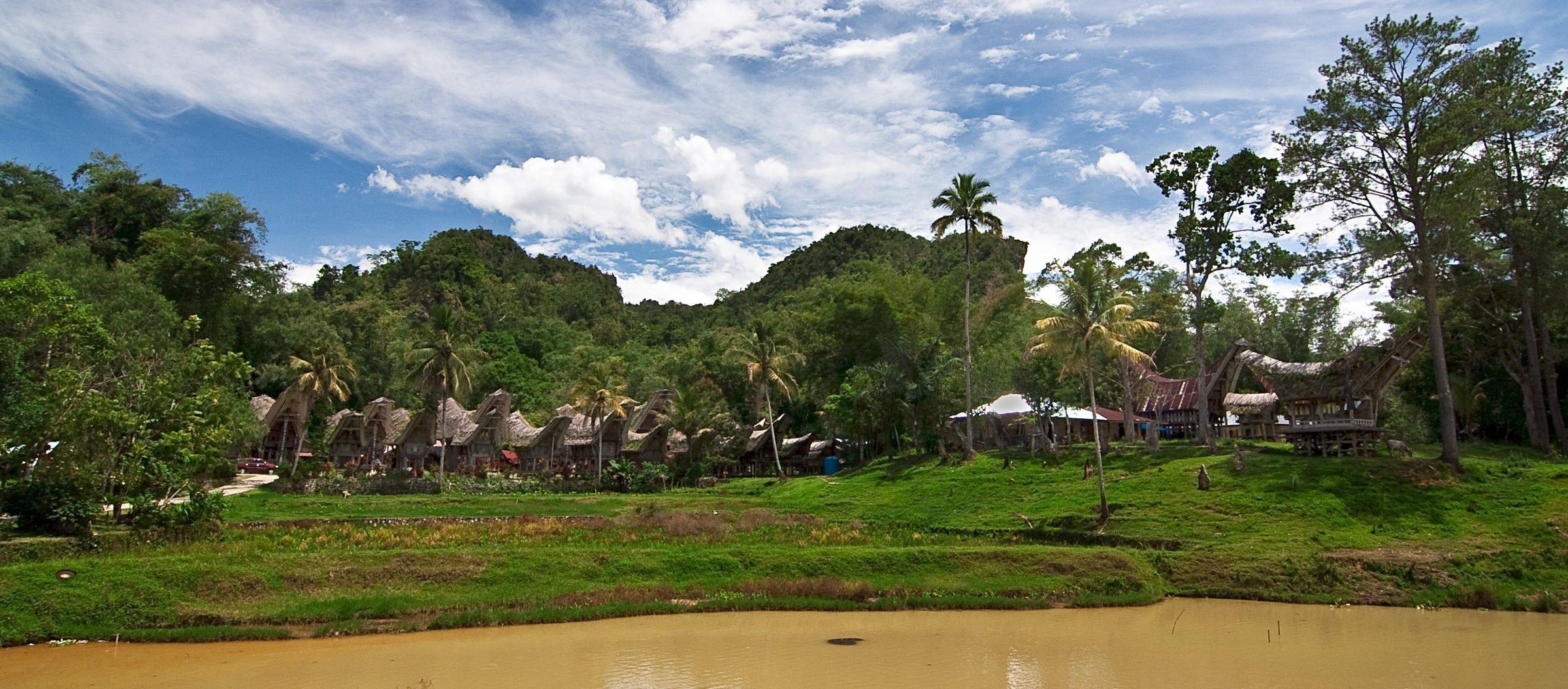 Toraja Village with Tongkonan